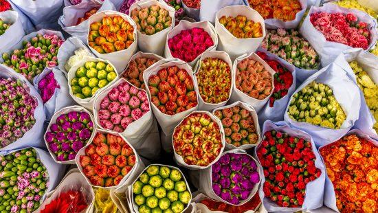 Multi colour bouquets of flowers